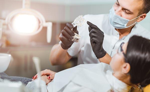 Dentist showing patient model of teeth